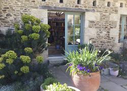 from garden looking into studio